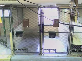 Wellsboro Veterinary Hospital