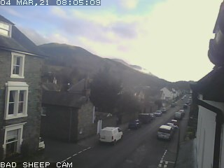 'Bad Sheep Cam' Blencathra Street