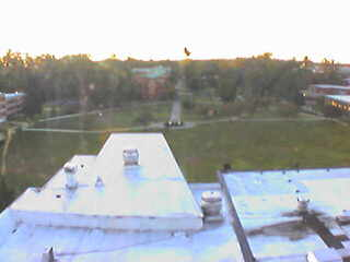 Westfield State University - Campus Green from Ely Library