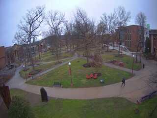 Indiana University of Pennsylvania - Grove Cam