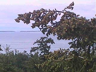 Highland Inn Overlooking Haro Strait