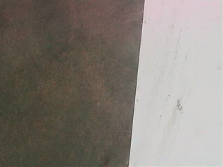 Ocean Spray Cranberries - Cranberry Bog Cam
