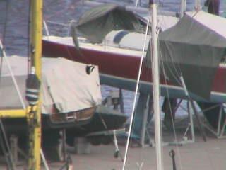 Tallinn Harbour (Webcam Offline)