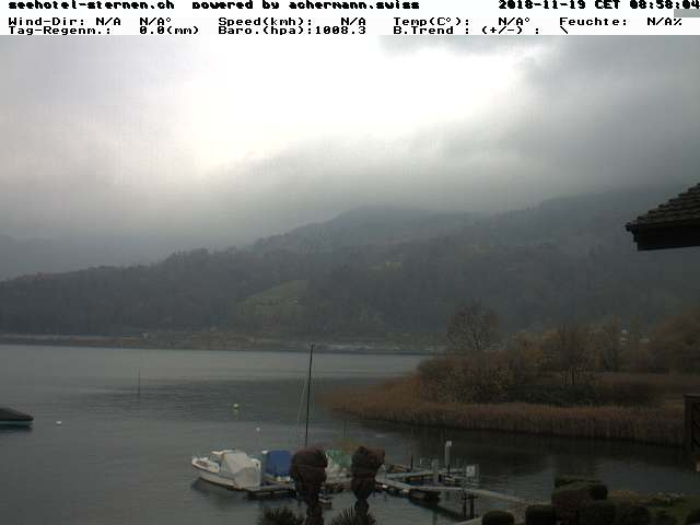 Seehotel Sternen Horw on Lake Lucerne