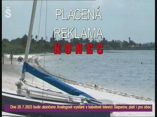 Electronic Ads