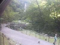 The Monkey Walk at Kanbanotaki Natural Park