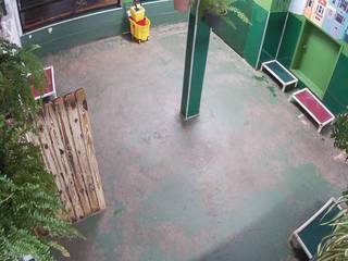 Fog City Dogs - Play Area