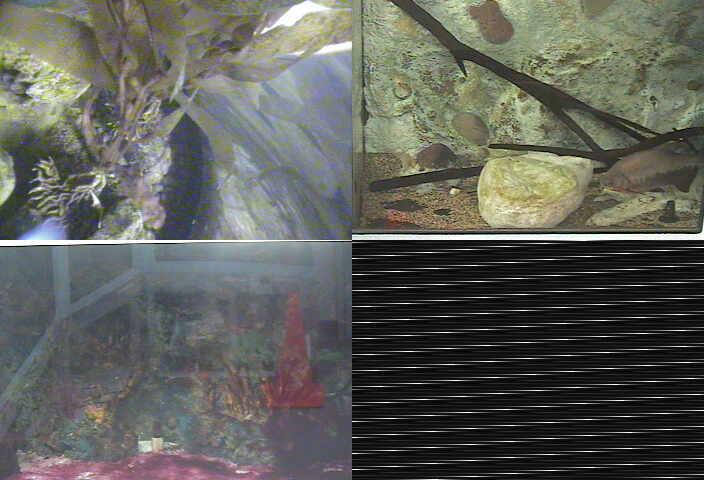 BioTrek Collection CalPoly Pomona