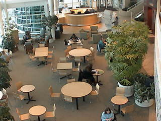 GVSU - CHS Indoor Plaza