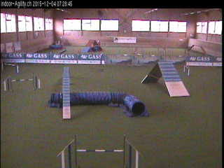 Indoor Agility Dog Training Centre