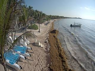 Grand Palladium Colonial Resort & Spa - Beach Cam